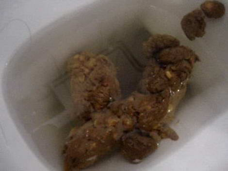 scat & pee threesome