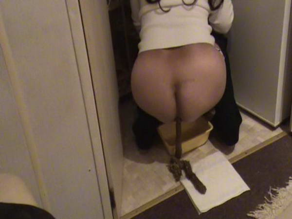 Pinky fucks the shit out of cherokee d ass, blowjobs toilet slut