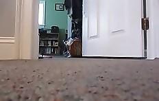 Young slim woman poops on floor
