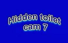 Hidden toilet cam_7