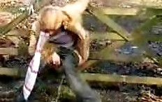 Woman pissing in a wooden fence